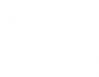 BSC  – Building Solutions & Consulting